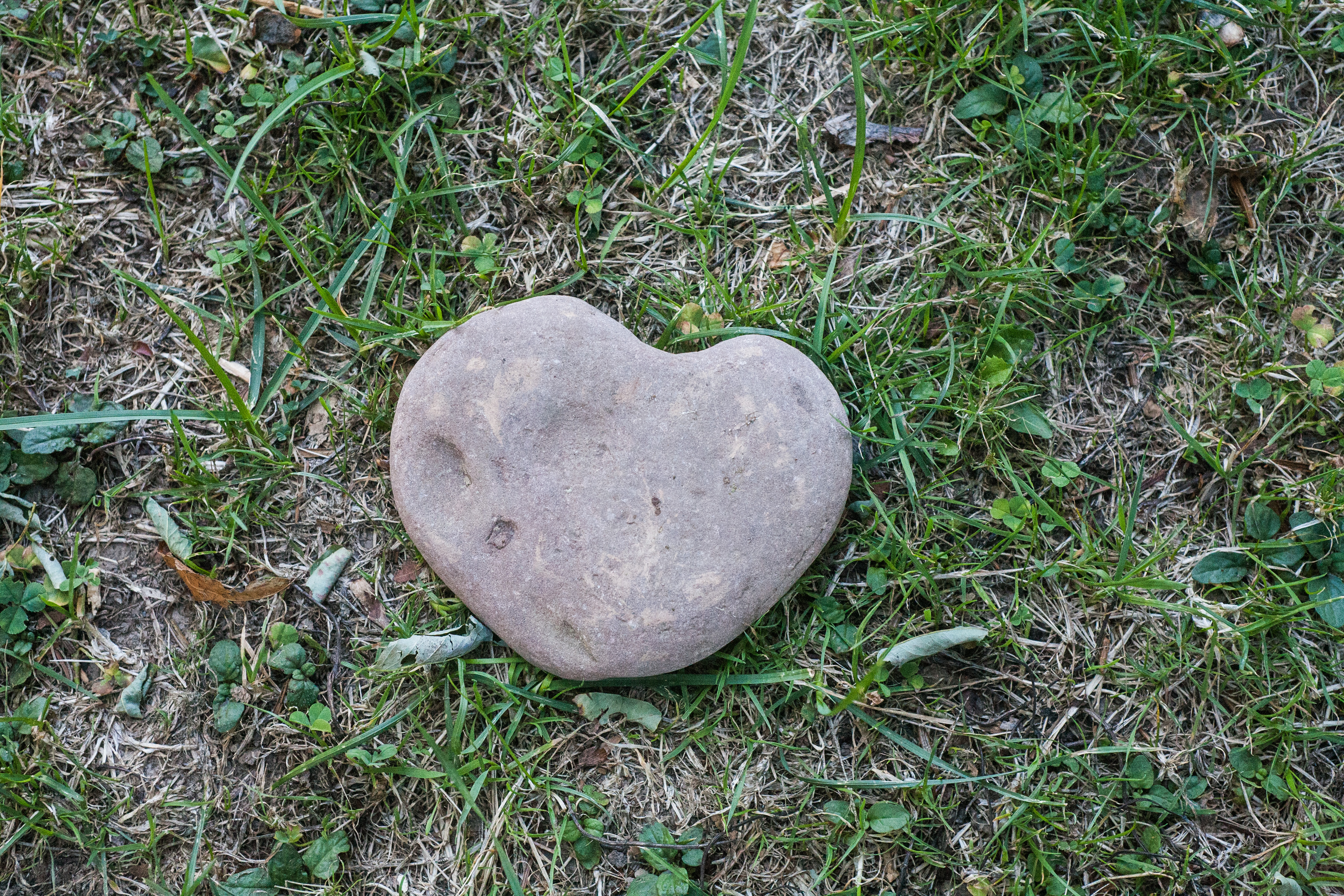 A Rock That Shows Love