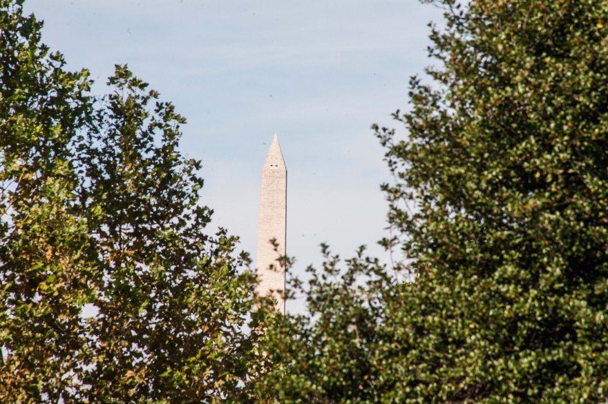 Monument Through the Trees